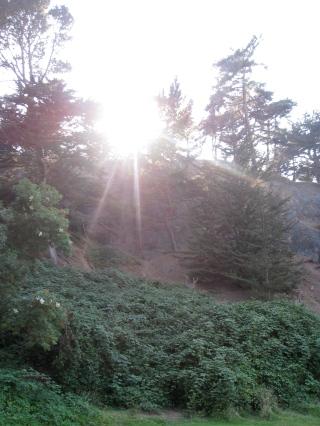 nature trails.