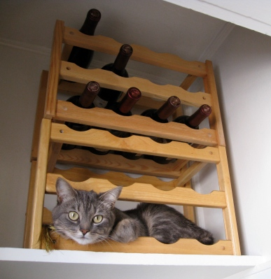 what could be more comfortable than a wine rack?